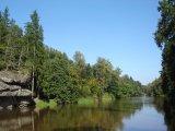 Lesem na Dubový vrch -pohled na řeku Lužnici od Židovy strouhy