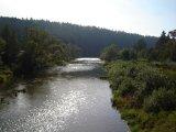 Údolím Lužnice do Dobronic - řeka Lužnice v Dobronicích
