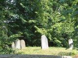 Židovský hřbitov v Bechyni - náhrobky